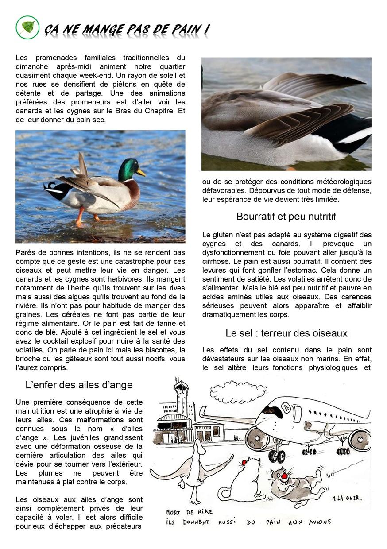 Gazette du Chat Pitre numero 44 Page 8